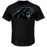 NFL-T-Shirt-CAROLINA-PANTHERS-black-Line-to-Gain-in-L-LARGE-0